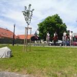 Svehl.lipa-Cehnice-2013-Svornost-0007